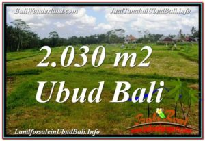 Magnificent 2,030 m2 LAND SALE IN UBUD BALI TJUB623