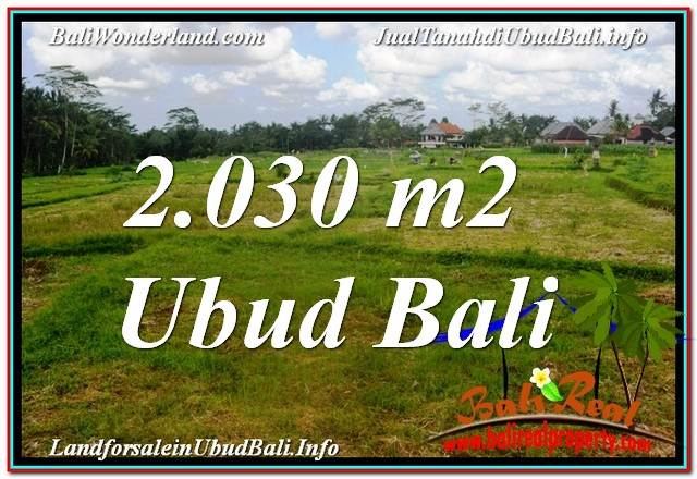 2,030 m2 LAND FOR SALE IN UBUD BALI TJUB623