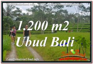 Magnificent 1,200 m2 LAND FOR SALE IN UBUD BALI TJUB624