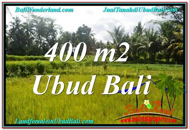 Affordable PROPERTY 400 m2 LAND SALE IN Ubud Pejeng BALI TJUB627