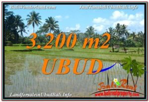 Magnificent PROPERTY LAND IN UBUD FOR SALE TJUB628