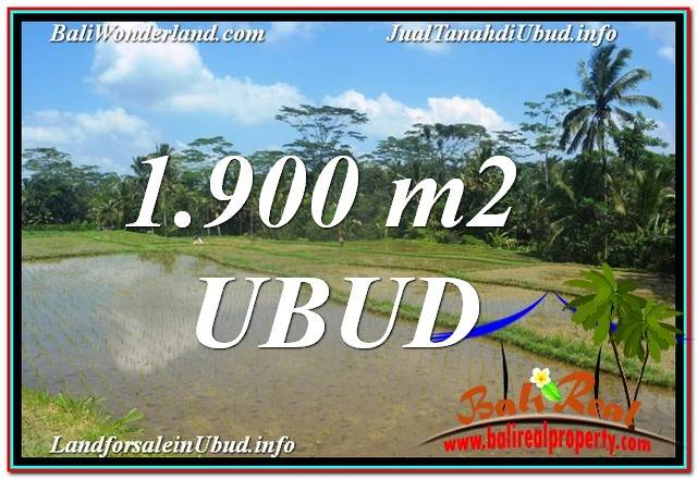 Magnificent 1,900 m2 LAND SALE IN UBUD BALI TJUB629