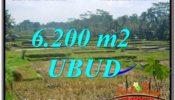 Magnificent 6,200 m2 LAND FOR SALE IN Ubud Payangan TJUB631