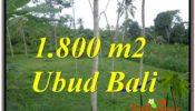1,800 m2 LAND SALE IN UBUD TJUB610