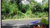 Exotic LAND FOR SALE IN UBUD TJUB611