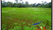Magnificent LAND IN UBUD FOR SALE TJUB613
