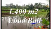 Beautiful UBUD LAND FOR SALE TJUB615