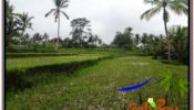 FOR SALE Affordable PROPERTY 1,800 m2 LAND IN UBUD BALI TJUB616