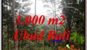 Affordable PROPERTY LAND SALE IN UBUD TJUB617