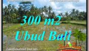 FOR SALE Exotic PROPERTY LAND IN UBUD TJUB619
