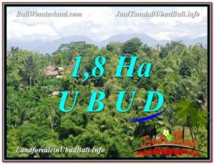 Beautiful PROPERTY UBUD BALI LAND FOR SALE TJUB589
