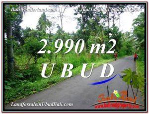 2,990 m2 LAND SALE IN UBUD BALI TJUB591
