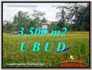Exotic UBUD BALI 3,500 m2 LAND FOR SALE TJUB596