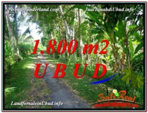 Magnificent 1,800 m2 LAND IN Ubud Payangan FOR SALE TJUB597