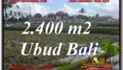Exotic PROPERTY LAND IN UBUD FOR SALE TJUB620