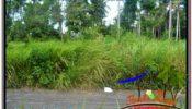 Beautiful PROPERTY Sentral Ubud 614 m2 LAND FOR SALE TJUB622