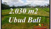 Beautiful PROPERTY LAND IN UBUD BALI FOR SALE TJUB623