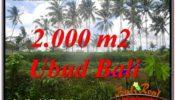 UBUD BALI 2,000 m2 LAND FOR SALE TJUB625