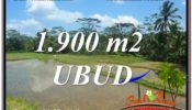 FOR SALE Exotic 1,900 m2 LAND IN UBUD BALI TJUB629