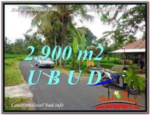 Magnificent PROPERTY LAND SALE IN UBUD TJUB586