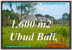 FOR SALE Magnificent 1,600 m2 LAND IN UBUD BALI TJUB633