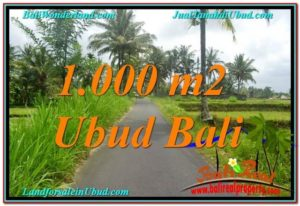 Magnificent 1,000 m2 LAND IN UBUD BALI FOR SALE TJUB634