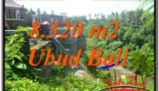 Beautiful 8,320 m2 LAND FOR SALE IN Sentral / Ubud Center TJUB635