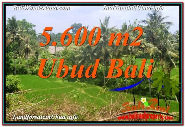 FOR SALE Magnificent 5,600 m2 LAND IN Sentral / Ubud Center BALI TJUB636