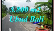 Affordable PROPERTY 5,800 m2 LAND IN Ubud Tegalalang FOR SALE TJUB637