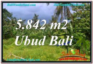 Affordable PROPERTY 5,842 m2 LAND SALE IN UBUD BALI TJUB638