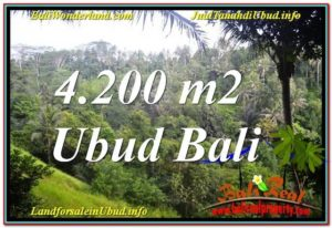 Exotic PROPERTY Sentral / Ubud Center 4,200 m2 LAND FOR SALE TJUB639