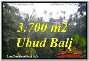 FOR SALE Exotic PROPERTY 3,700 m2 LAND IN UBUD BALI TJUB640