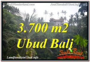 FOR SALE Exotic PROPERTY 3,700 m2 LAND IN UBUD BALI TJUB640