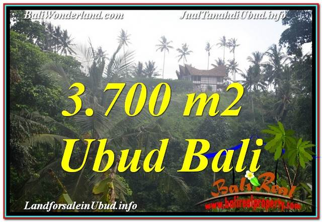 Beautiful 3,700 m2 LAND SALE IN Sentral / Ubud Center BALI TJUB640
