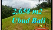 Magnificent PROPERTY 2,658 m2 LAND SALE IN Sentral / Ubud Center TJUB641