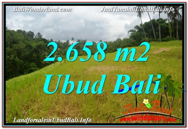 Beautiful 2,658 m2 LAND FOR SALE IN Sentral / Ubud Center TJUB641