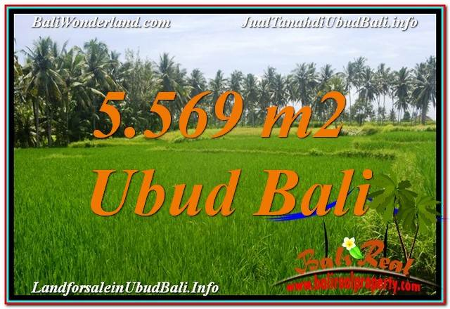 Exotic PROPERTY LAND IN UBUD FOR SALE TJUB642