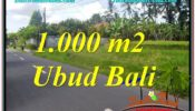 Magnificent LAND IN UBUD FOR SALE TJUB649