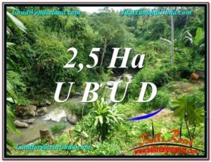 Exotic LAND IN UBUD FOR SALE TJUB579