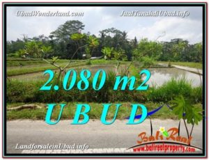 Magnificent PROPERTY Ubud Pejeng 2,080 m2 LAND FOR SALE TJUB582