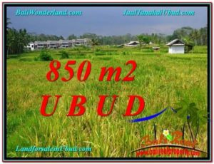 Beautiful LAND SALE IN UBUD TJUB583