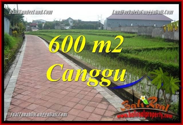 Beautiful PROPERTY LAND FOR SALE IN Canggu Brawa TJCG220
