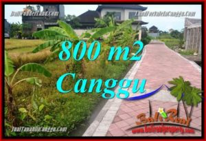 Exotic PROPERTY LAND IN Canggu Brawa BALI FOR SALE TJCG221