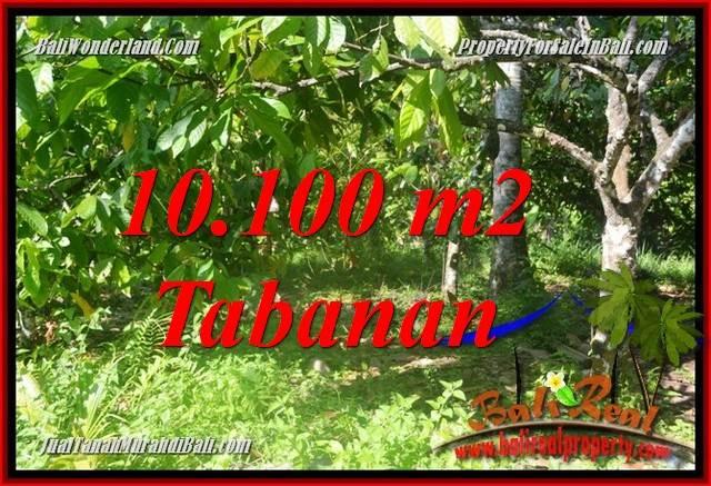 Exotic 10,100 m2 LAND SALE IN Tabanan Selemadeg Barat BALI TJTB360