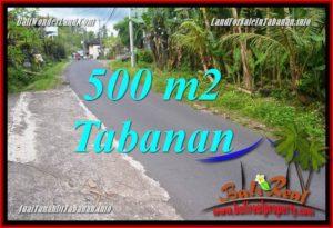 Exotic 500 m2 LAND SALE IN Tabanan Kerambitan BALI TJTB362