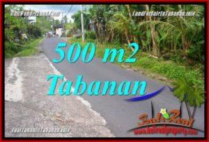 FOR SALE Exotic LAND IN TABANAN BALI TJTB362