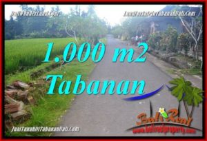 Beautiful PROPERTY LAND IN TABANAN BALI FOR SALE TJTB363