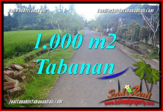 LAND IN Tabanan Selemadeg Timur FOR SALE TJTB363