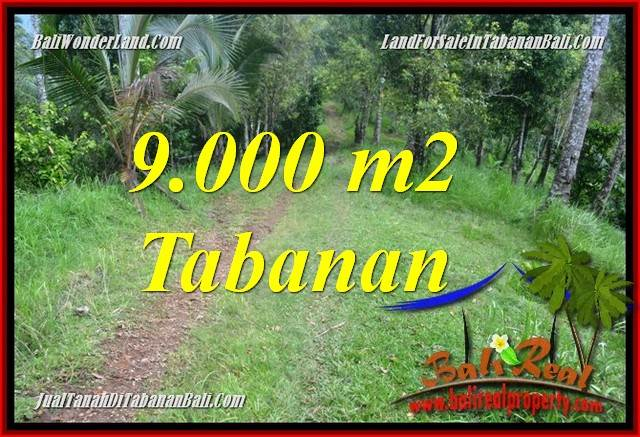 Exotic PROPERTY TABANAN BALI LAND FOR SALE TJTB364
