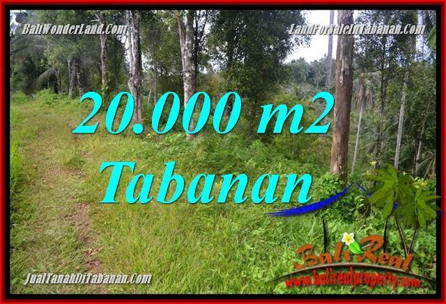 Affordable PROPERTY 20,000 m2 LAND FOR SALE IN TABANAN BALI TJTB365